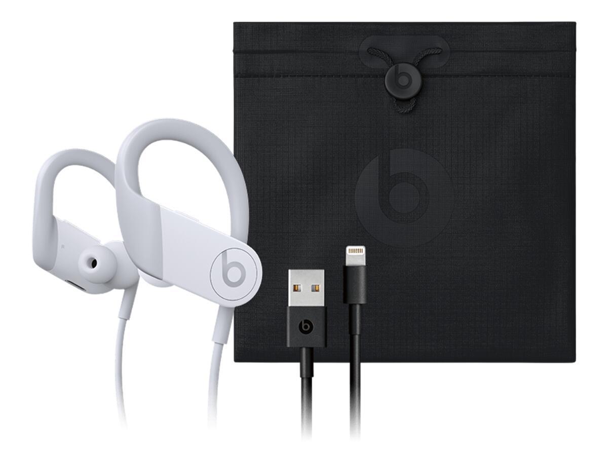 Apple Powerbeats 4 Case