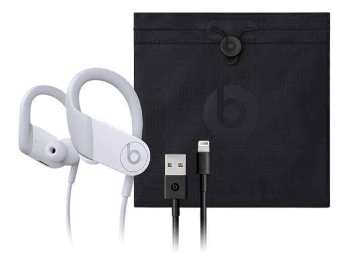 Apple Powerbeats 4 Case