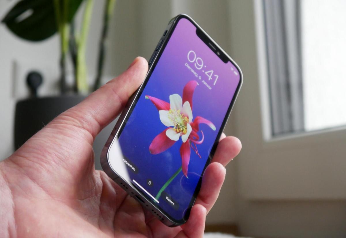 Apple Iphone 12 Pro Hand Blume