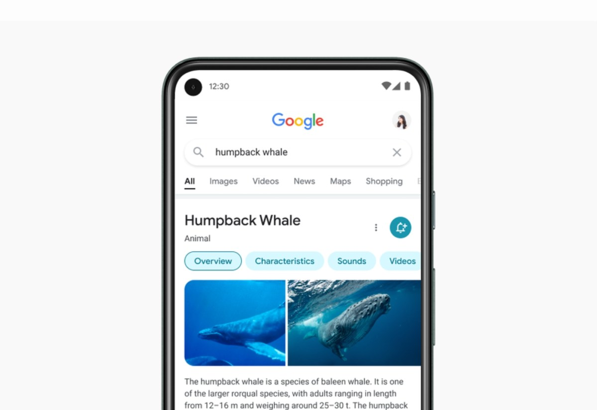 Google Suche Design Neu Header