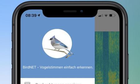 Birdnet 2