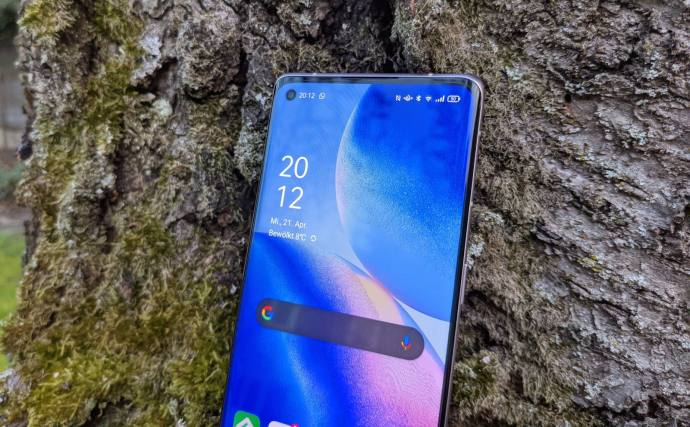 Oppo Find X3 Neo Display