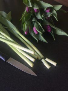 So bleiben Blumen lnger frisch  10 Tipps die