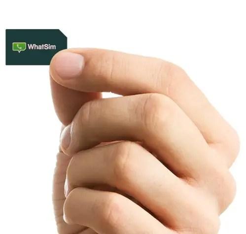 WhatSim-2-e1421917730124