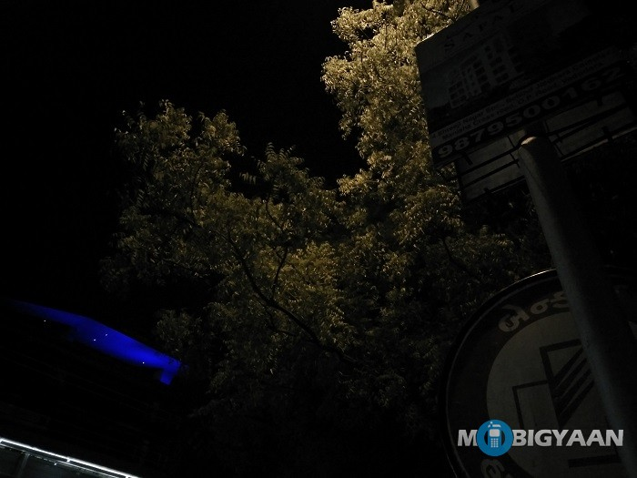 oneplus-x-review-camera-night-shot-tree-non-hdr
