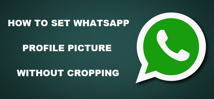 How-to-set-WhatsApp-profile-picture-without-cropping-4