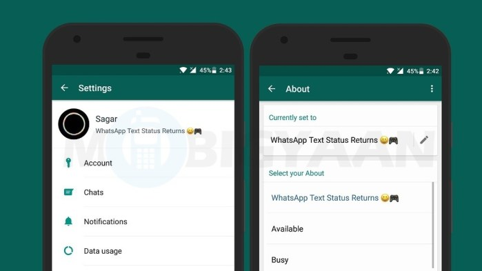 Set text status on WhatsApp