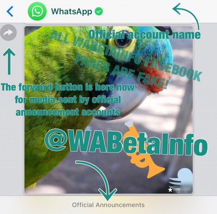 whatsapp-business-images-2