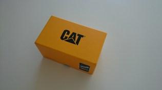 Cat B15Q (22)