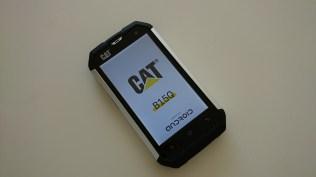Cat B15Q (5)