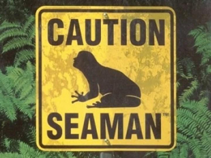 Best Sega Dreamcast Game - Seaman