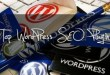 10 SEO Plugins for WordPress Blog