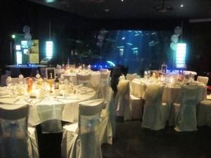 The Deep Hull Wedding dj party mobile disco Hull