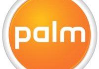 palm.200