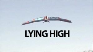flying-birdman-fake flying-birdman-fake