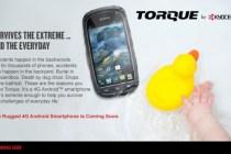 torue