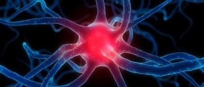 parkinsons-disease-kinetin