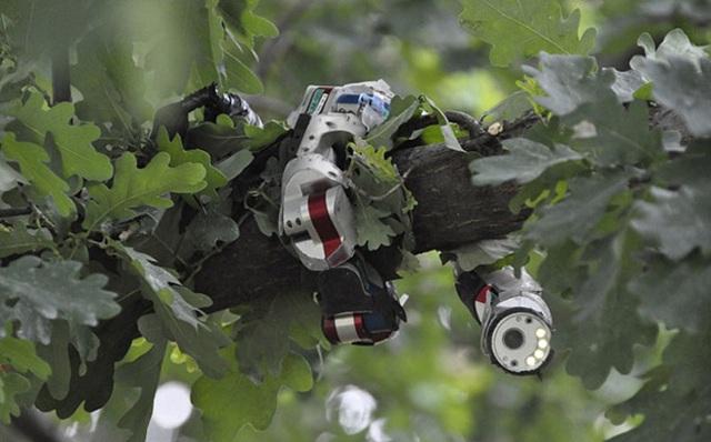 sidewinder-snake-robot
