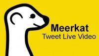 Meerkat-640x360