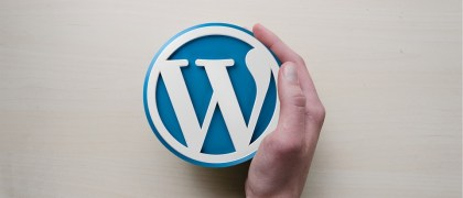 Some Wordpress Basics For Newbies