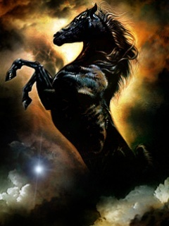 Hd Animated Wallpapers For Mobile Free Download Download Black Horse Mobile Wallpaper Mobile Toones
