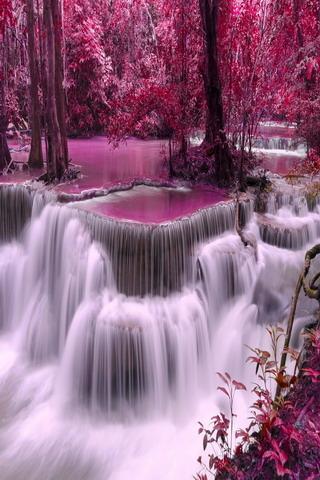 Fall Moving Wallpaper Download Pink Waterfalls Nature Trees Mobile Wallpaper