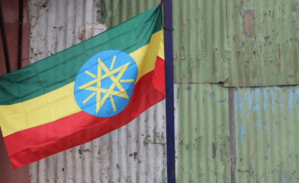 Ethiopia opens up Ethio Telecom to investors - Mobile World Live