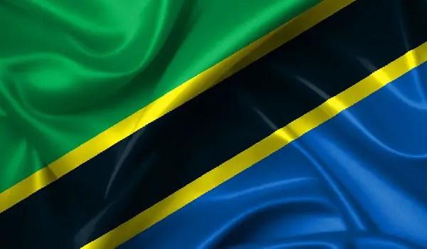 Fact File: Tanzanian Mobile subscribers