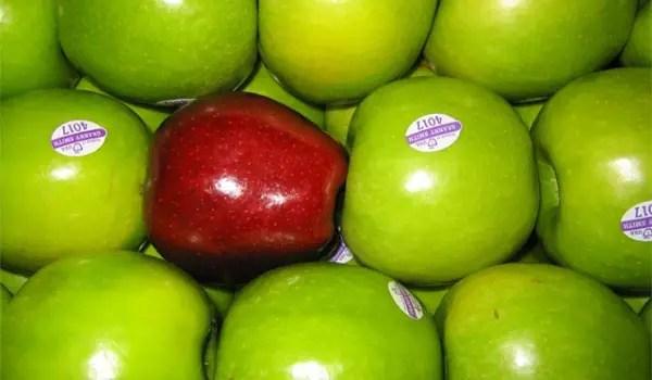 One bad apple - bad gang