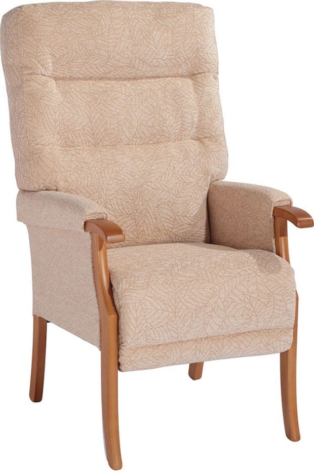 Padded Shower Chair