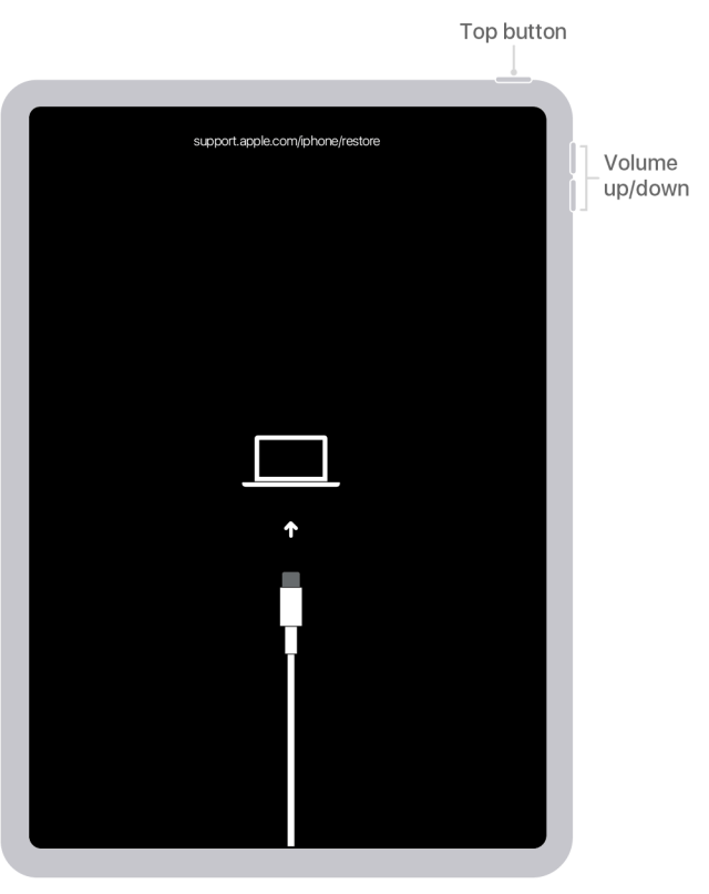 How to Factory Reset iPad Without Apple ID - 12