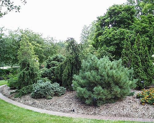 mbg plant collection gardens tour