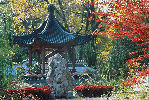 missouri botanical garden chinese