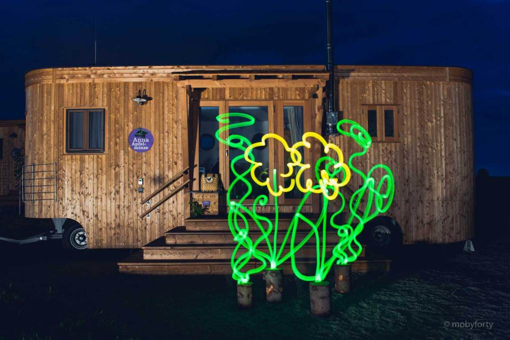 Lightpainting Blumen