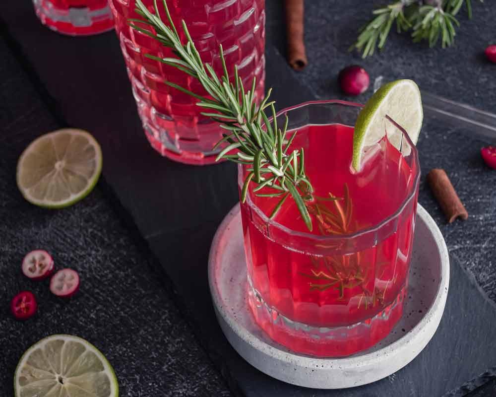 Cranberry Sirup Getränk angerichtet