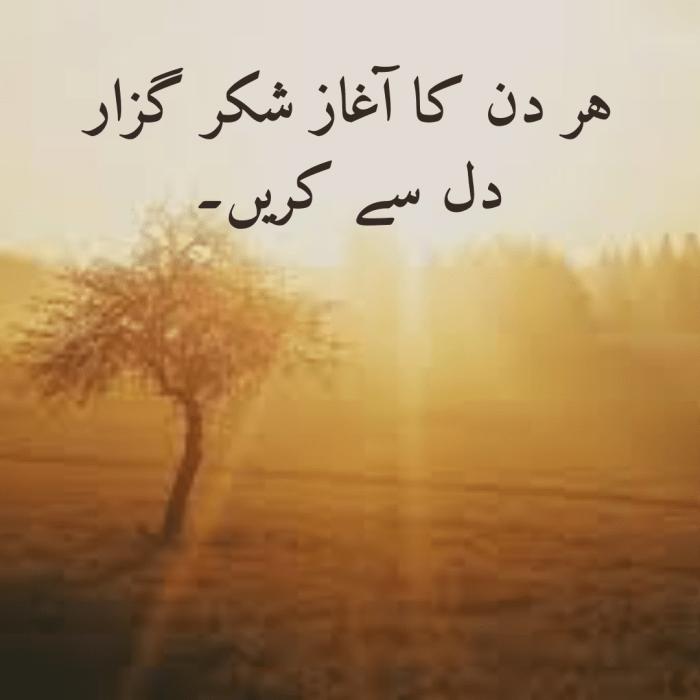 Islamic status | Islamic | tarjuma | status | Hadees | Allah | Dua | Believe |