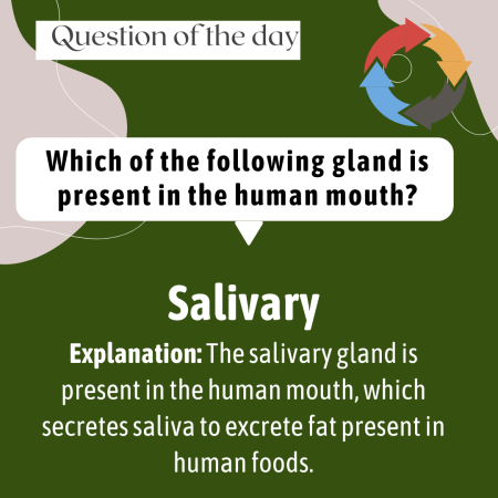 Which of the following gland is present in the human mouth?