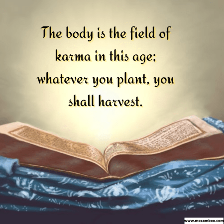 The body is the field of karma in this age; whatever you plant, you shall harvest.