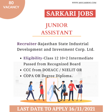 Junior Assistant Rajasthan State Industrial Development and Investment Corp. Ltd