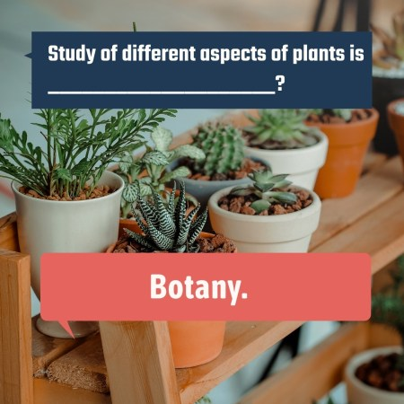 Study of different aspects of plants is ____________________?