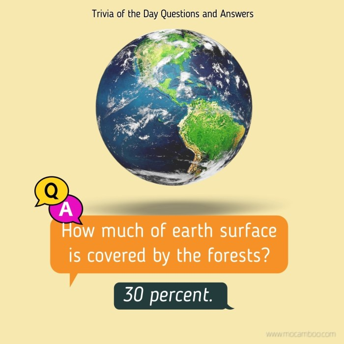 How much of earth surface is covered by the forests?