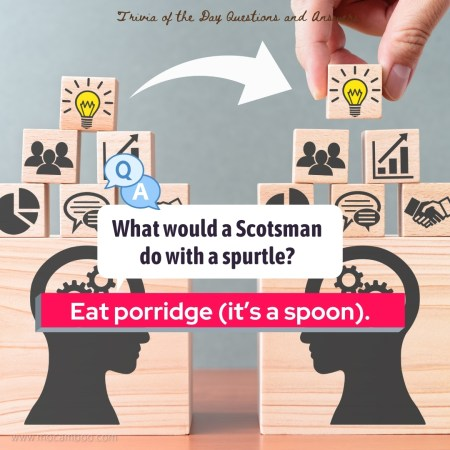 What would a Scotsman do with a spurtle?