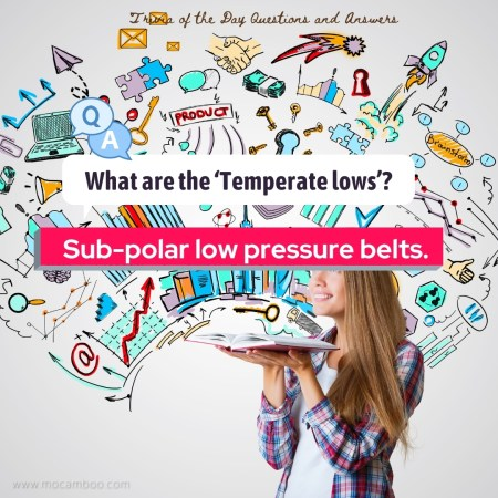 What are the 'Temperate lows'?