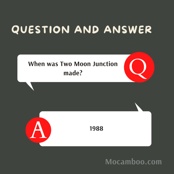 When was Two Moon Junction made?