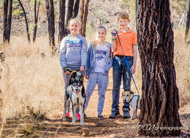 Mocca Photography - Pets