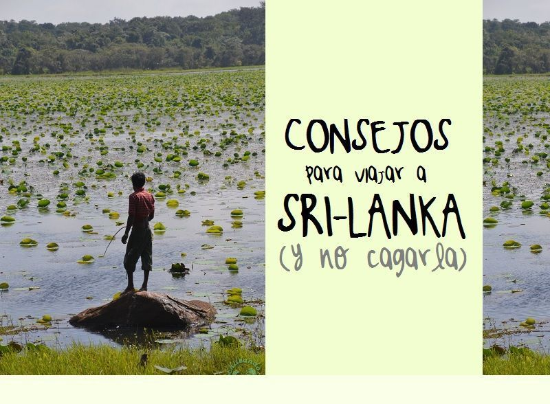 consejos-para-viajar-sri-lanka-como-organizar-viaje-por-libre