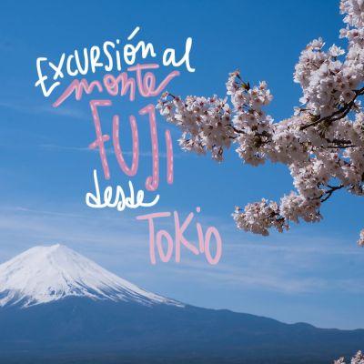 EXCURSIÓN AL MONTE FUJI DESDE TOKIO (POR LIBRE Y EN TOUR)