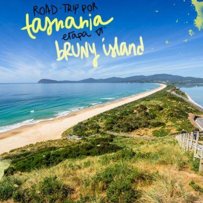 ROADTRIP POR TASMANIA. ETAPA 6: BRUNY ISLAND