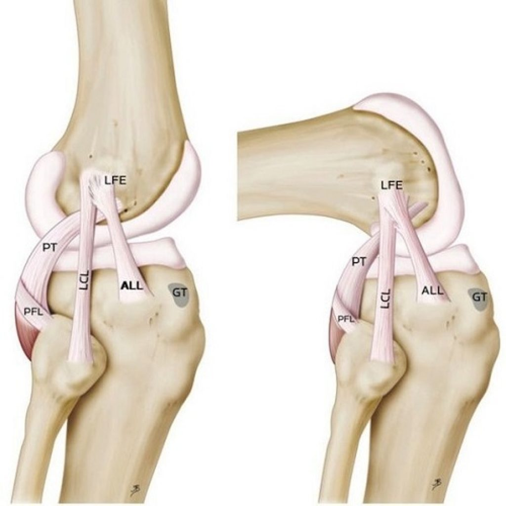 sacroiliac joint diagram on off switch wiring knee pain location get free image about