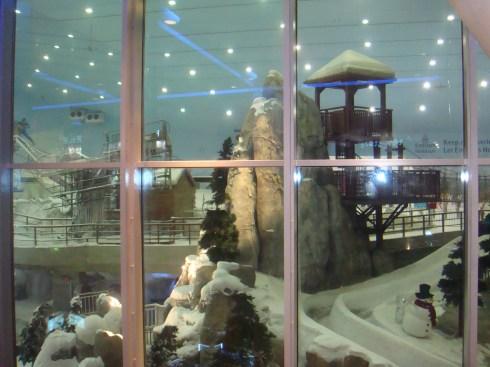 Ski Dubai Mall